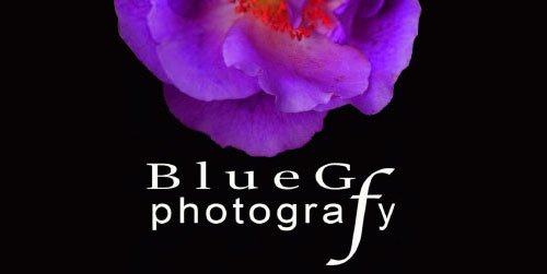 BlueG Photography